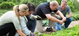 Хранителните кооперативи – бъдещето на земеделието
